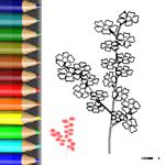 BW_Kirschblüte