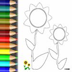 BW_Sonnenblume