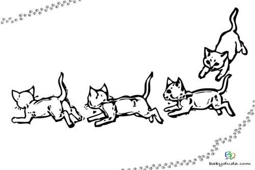 Kätzchen Ausmalbild - Malvorlage Tierbilder ausmalen