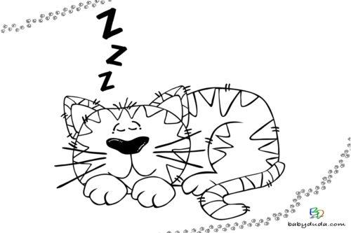 Schlafender Kater Ausmalbild - Malvorlage Tierbilder ausmalen