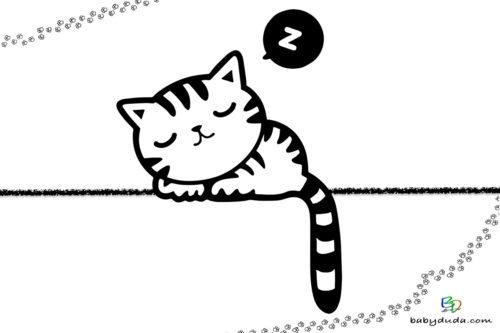 Ausmalbild schlafende Katze - Malvorlage  ausmalen