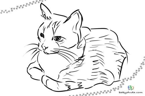 Liegende Katze Ausmalbild - Malvorlage Tierbilder ausmalen