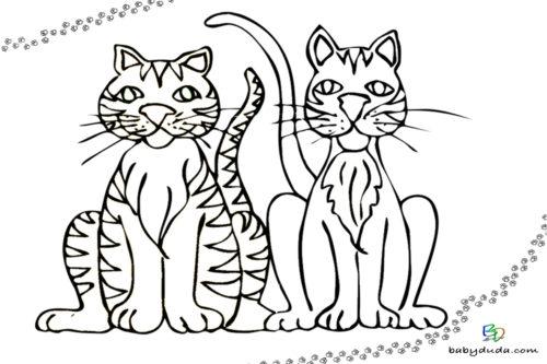 Malvorlage Katzenbild für Kinder Ausmalen