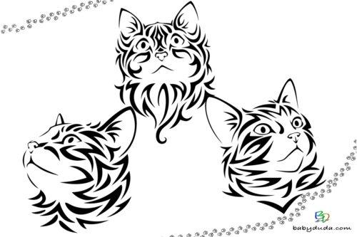 Realistische Katzenköpfe Ausmalbild - Malvorlage Tierbilder ausmalen