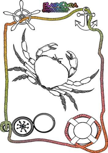 Ausmalbild Meer Krabbe