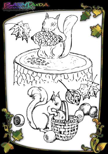 Herbst Tiere Ausmalbild Eichhoernchen