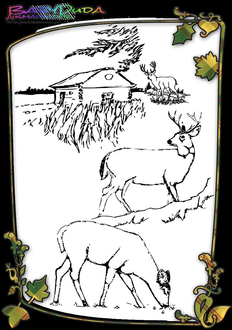 Ausmalbilder Tiere Im Wald Gratis : Herbst Ausmalbilder Herbstmotiv Herbstlaub Tiere Babyduda Malbuch
