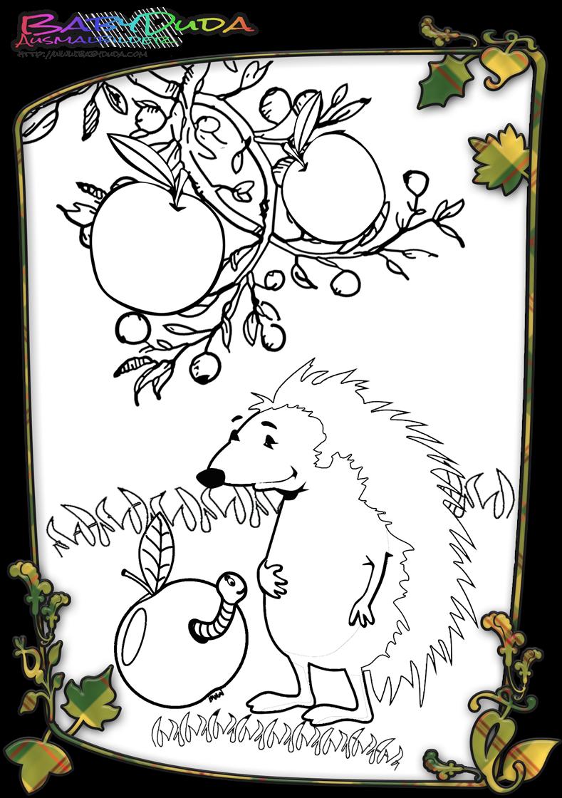 Ausmalbilder Herbst Igel : Herbst Ausmalbilder Herbstmotiv Herbstlaub Tiere Babyduda Malbuch