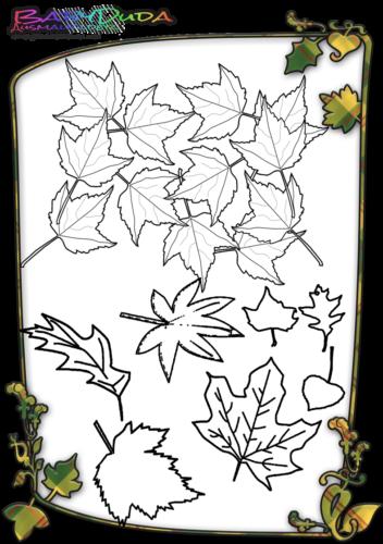 Herbstblatt-Ausmalbild