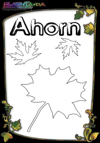 Herbstblatt-Ausmalbild-Ahorn