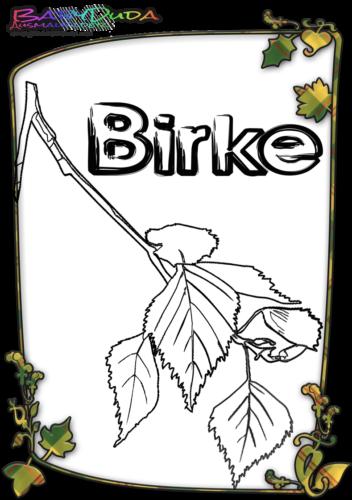 Herbstblatt-Ausmalbild-Birke