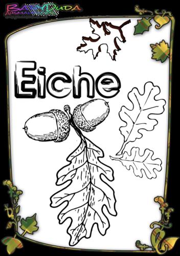 Herbstblatt-Ausmalbild-Eiche
