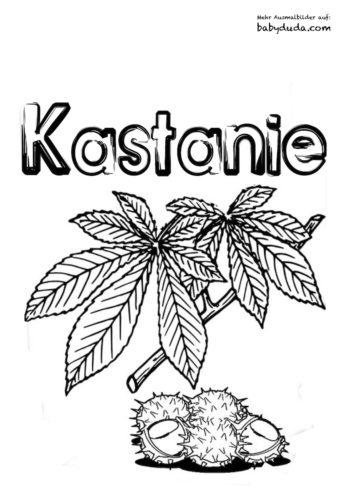 Herbstblatt-Ausmalbild-Kastanie