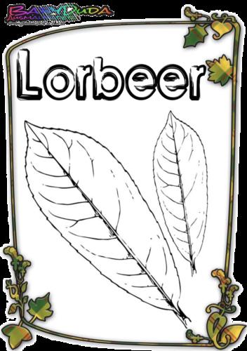 Herbstblatt-Ausmalbild-Lorbeer