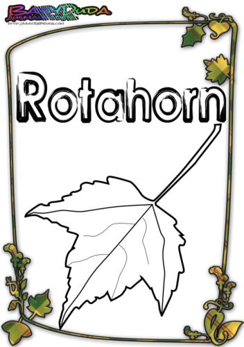 Herbstblatt-Ausmalbild-Rotahorn