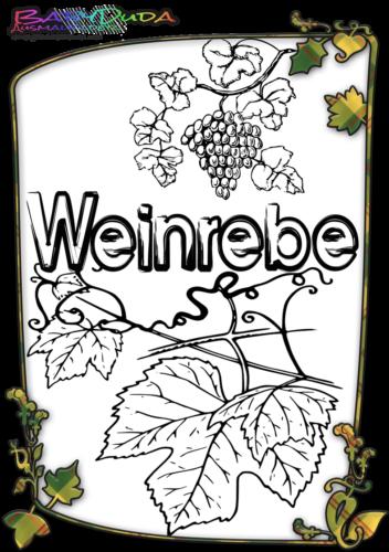 Herbstblatt-Ausmalbild-Weinrebe