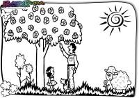 Frühling-Ausmalbild-Baum