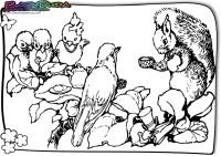 Frühling-Ausmalbild-Eichhoernchen