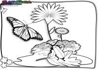 Frühling-Ausmalbild-Insekten