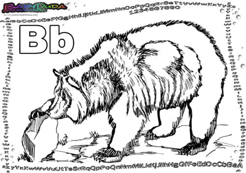 ABC Ausmalen Buchstabe B-Bär