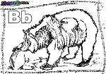 ABC-Buchstabe-B-Bär