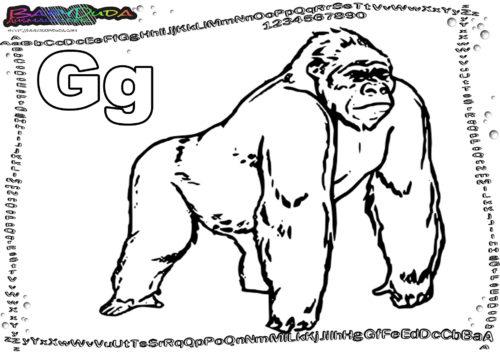 Malbild Tier ABC Buchstabe G-Gorilla