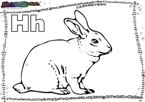 ABC Tiere Ausmalen Buchstabe H-Hase