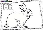 ABC-Buchstabe-H-Hase