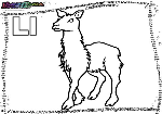 ABC-Buchstabe-L-Lama