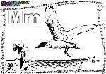 ABC-Buchstabe-M-Möve