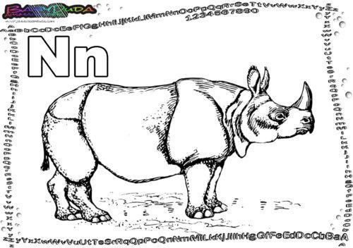 ABC Tiervorlagen ausmalen Buchstabe N-Nashorn