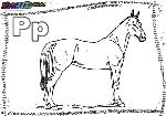 ABC-Buchstabe-P-Pferd
