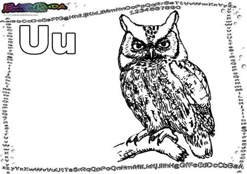 ABC Tier-Malbild Buchstabe U-Uhu