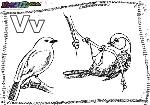 ABC-Buchstabe-V-Vogel