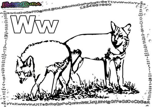 ABC Tierbuchstaben Buchstabe W-Wolf