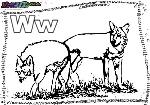 ABC-Buchstabe-W-Wolf