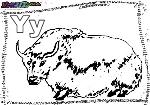 ABC-Buchstabe-Y-Yak