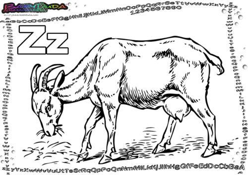 Abc Buchstaben Malvorlage Tiere Zum Ausmalen Babyduda