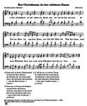 Kostenlose Weihnachtslieder für Kinder, Erzieher und Eltern zum Singen, Anhören und Musizieren zu Hause, im Kindergarten, in der Schule oder im Verein. Initiative Kinder wollen Singen und den Musikpiraten. GEMA frei.