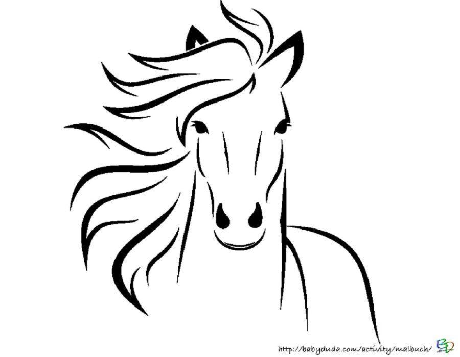 Pferdebilder zum Ausmalen Pferdekpfe zum Ausdrucken  BabyDuda