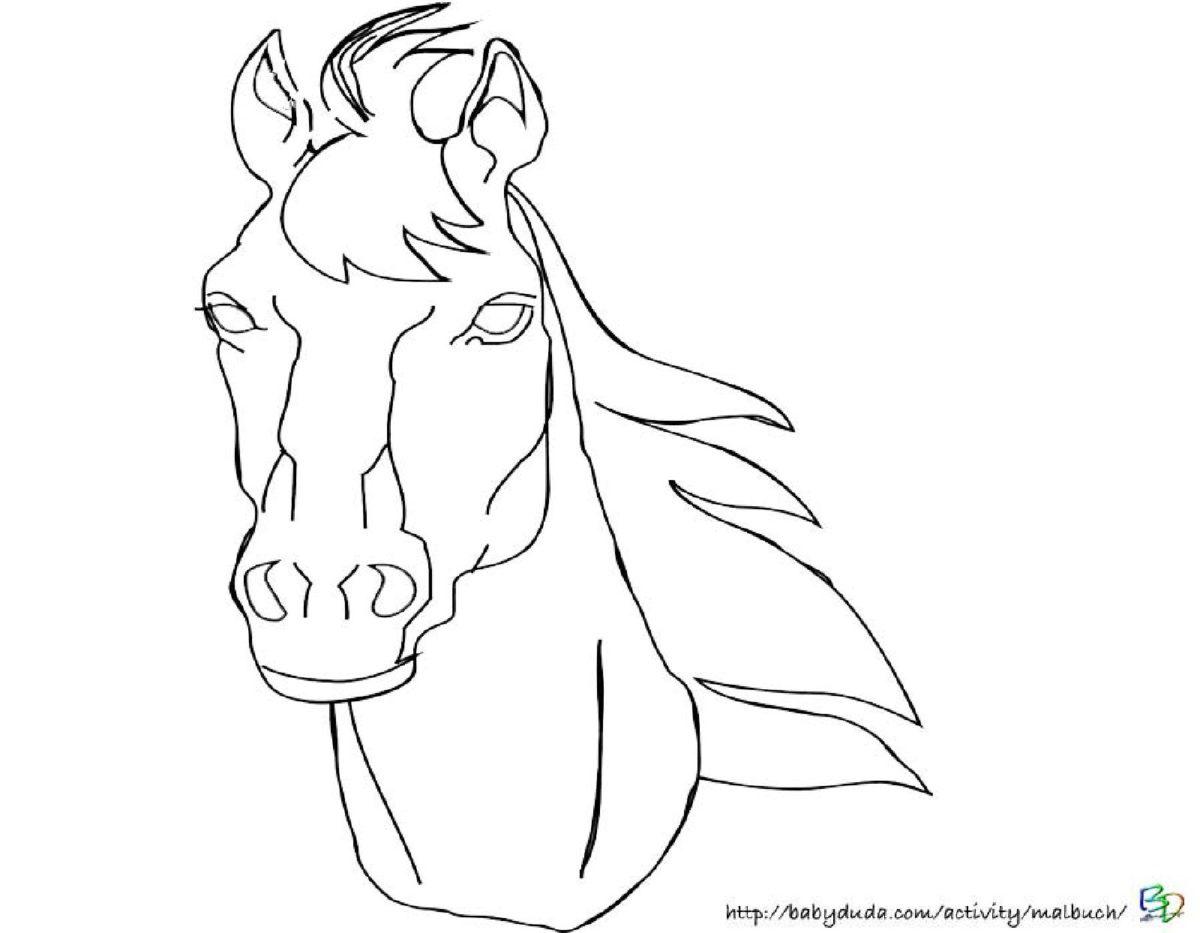 Pferdekopf Vorlage | Swalif