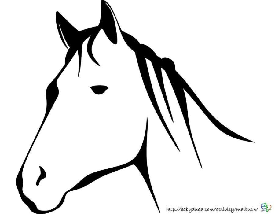 Pin Von Maria Magdalena Auf Thing I Pferde
