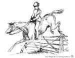 Malvorlage Pferd Sprung