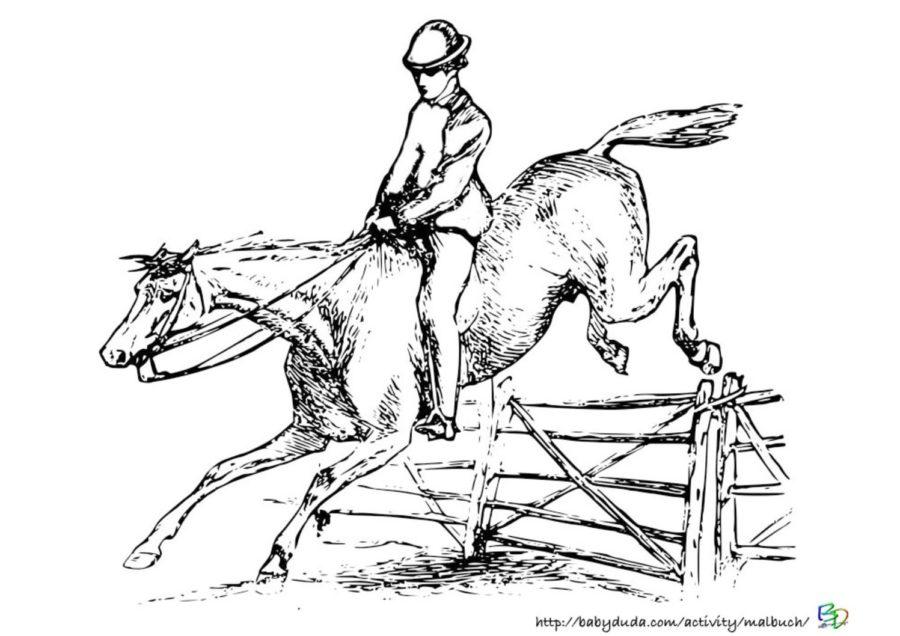 Pferdebilder Ausmalen Pferdeköpfe Ausmalbilder Babyduda