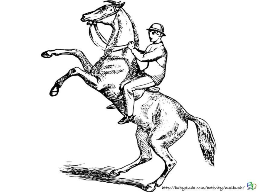 Malvorlage Pferd und Reiter