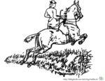 Malvorlage Pferd und Reiterin