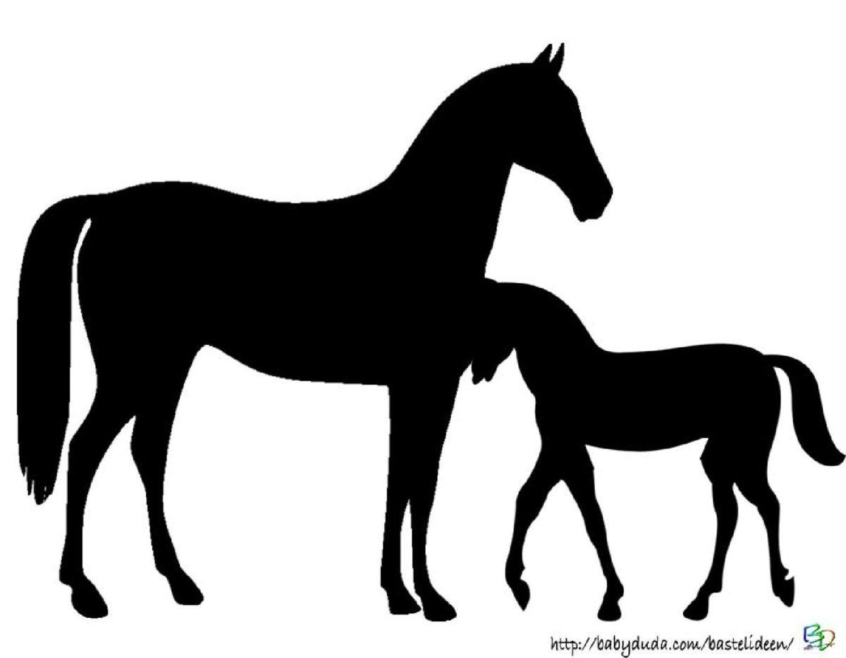 ausmalbilder pferd und reiter zum ausdrucken kostenlos babyduda. Black Bedroom Furniture Sets. Home Design Ideas