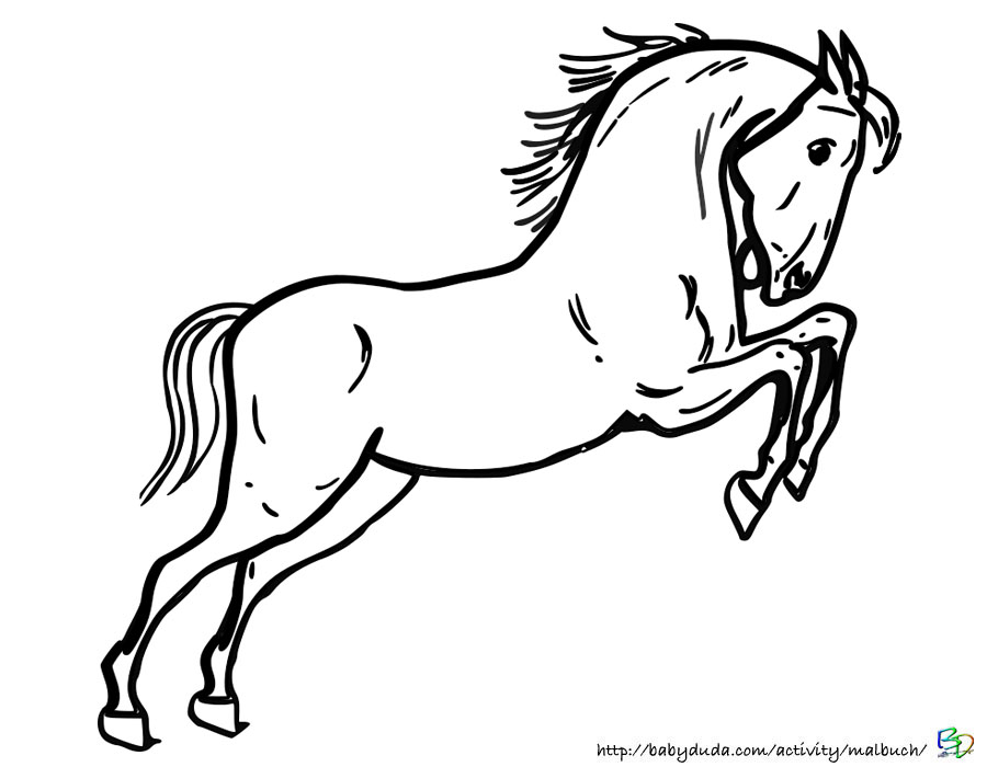 Pferde Bilder Zum Ausmalen Springen — hylen.maddawards.com
