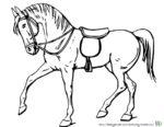 Gesatteltes Pferd zum Ausmalen. Malvorlagen von Pferden und Ausmalbild Pferde