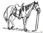 Pferd mit Sattel - Pferde zum Ausmalen. Malvorlagen Pferd und Ausmalbild Pferde